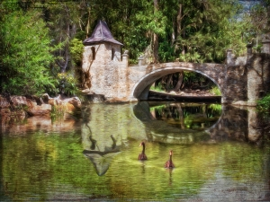 Cedar Creek Castle Reflections